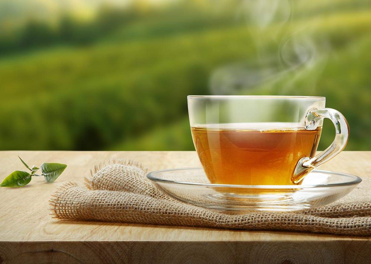 tea and infusion